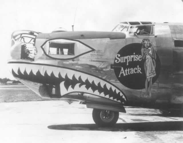 "B-24 Liberator ""Surprise Attack"" nose art"
